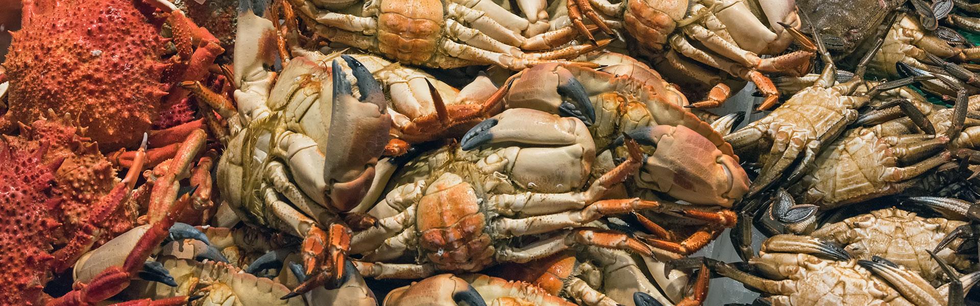 cinra_crab
